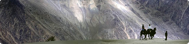 ladakh banner