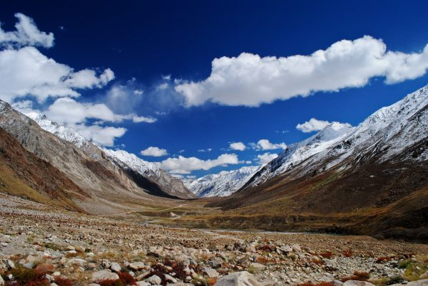Zanskar-Suru-282-1